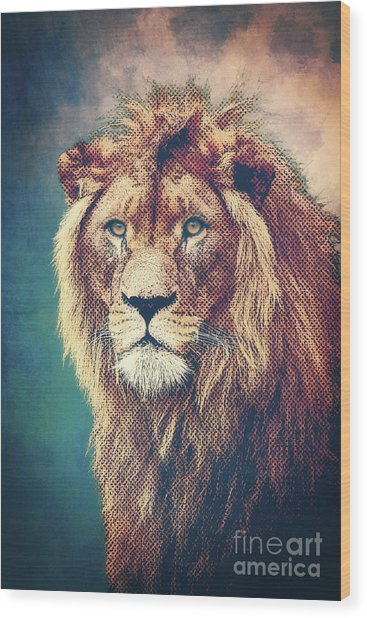 Young Lion Wood Print
