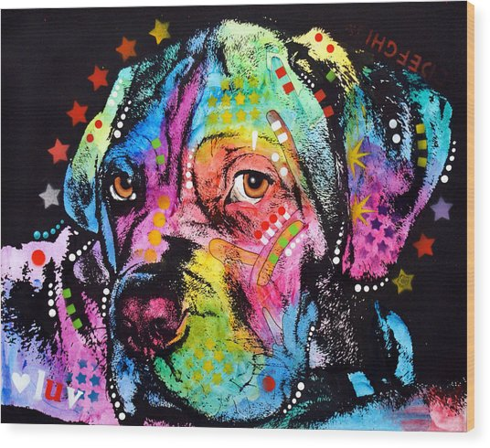 Young Mastiff Wood Print by Dean Russo Art