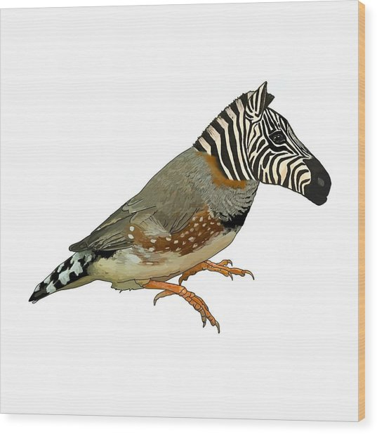 Wood Print featuring the drawing Z Is For Zebra Finch Thats Not A Zebra Finch by Joan Stratton