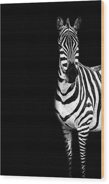 Zebra Drama Wood Print