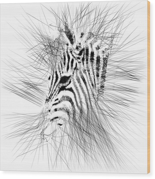 Wood Print featuring the digital art Zebrart by ISAW Company