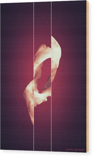 Zero - Surreal Abstract Elephant Bone Collage With Lines Wood Print