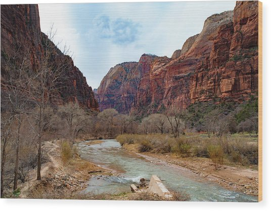Zion Canyon Wood Print