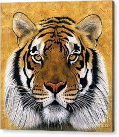 Panthera Acrylic Prints