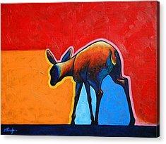 Deer Acrylic Prints