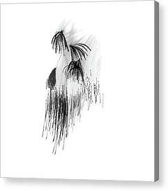 Visual Works Acrylic Prints