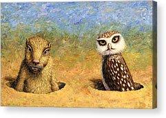 Burrow Owl Acrylic Prints
