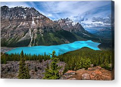 Peyto Lake Acrylic Prints