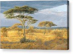 African Landscape Acrylic Prints