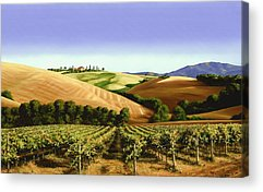 Pastoral Vineyard Acrylic Prints