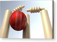 Cricket Digital Art Acrylic Prints