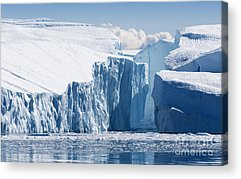 Antarctic Acrylic Prints
