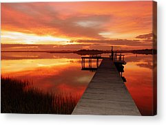Wetlands Acrylic Prints