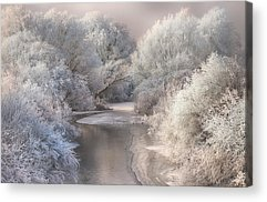 Frost Acrylic Prints