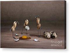 Eggshell Acrylic Prints