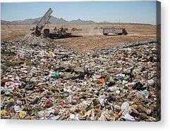 Rubbish Bin Photographs Acrylic Prints