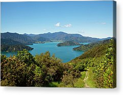 Queen Charlotte Sound Acrylic Prints
