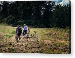 Amish Community Acrylic Prints