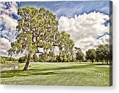 Howey-in-the-hills Acrylic Prints