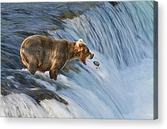 Using The River Acrylic Prints