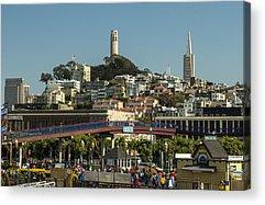 Oakland Seals Acrylic Prints