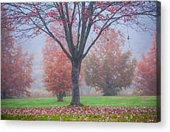 Moments Of Stillness Acrylic Prints