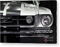 Collector Hood Ornament Acrylic Prints
