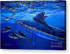 Marlin Azul Acrylic Prints