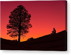 Winter Sunset Acrylic Prints