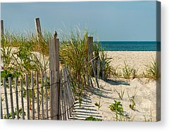 Sand Fences Acrylic Prints