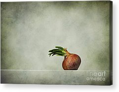 Onion Acrylic Prints