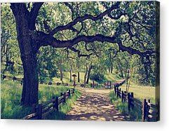Dappled Acrylic Prints