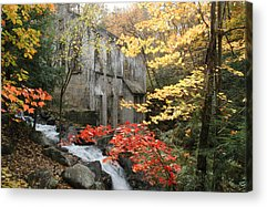 Rights Managed Images Acrylic Prints