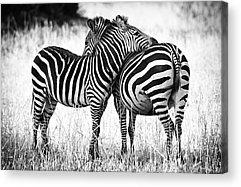 Family Love Acrylic Prints