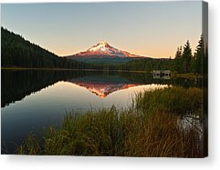 Oregon State Acrylic Prints
