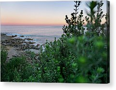 Featured Images Acrylic Prints