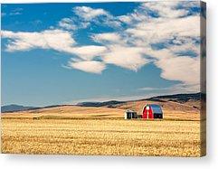 Montana Acrylic Prints