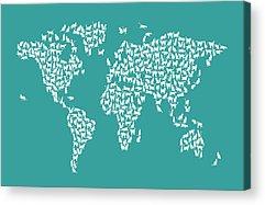 Cat Map Acrylic Prints