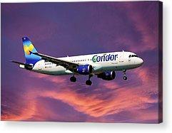 Condor Acrylic Prints