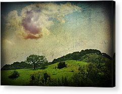 Textured Landscapes Digital Art Acrylic Prints
