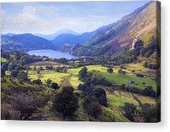 Llyn Gwynant Acrylic Prints