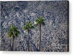 Aerial Tramway Acrylic Prints