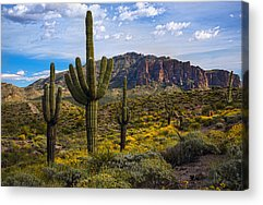 Superstition Mountains Acrylic Prints