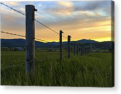 Star Valley Acrylic Prints