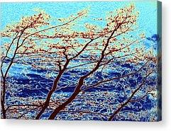Turbulent Skies Digital Art Acrylic Prints