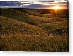 Rural Acrylic Prints