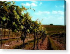 Silver Hills Winery Acrylic Prints