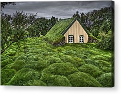 Turf Acrylic Prints