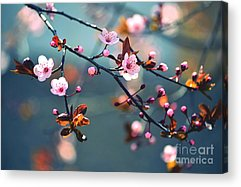 April Acrylic Prints