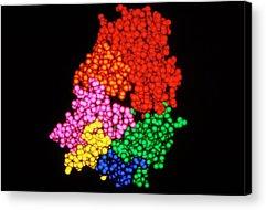 Molecular Engineering Acrylic Prints